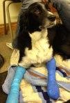 Sam-bandage