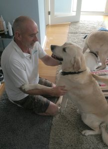 Guidedog massage training at AchyPaw