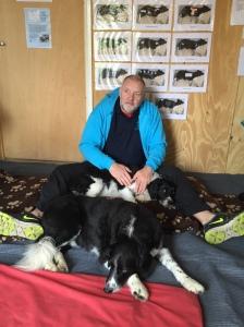 AchyPaw Dog Massage Plumpton