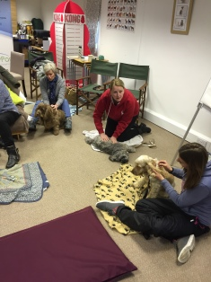 AchyPaw Canine Massage classes