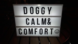 Canine Calm & Comfort AchyPaw