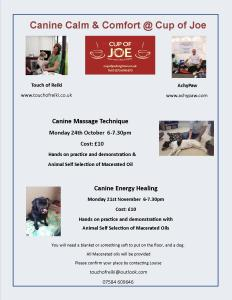 Canine Calm & Comfort AchyPaw Saltdean